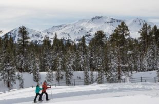 snowshoeing-inyo-craters-2